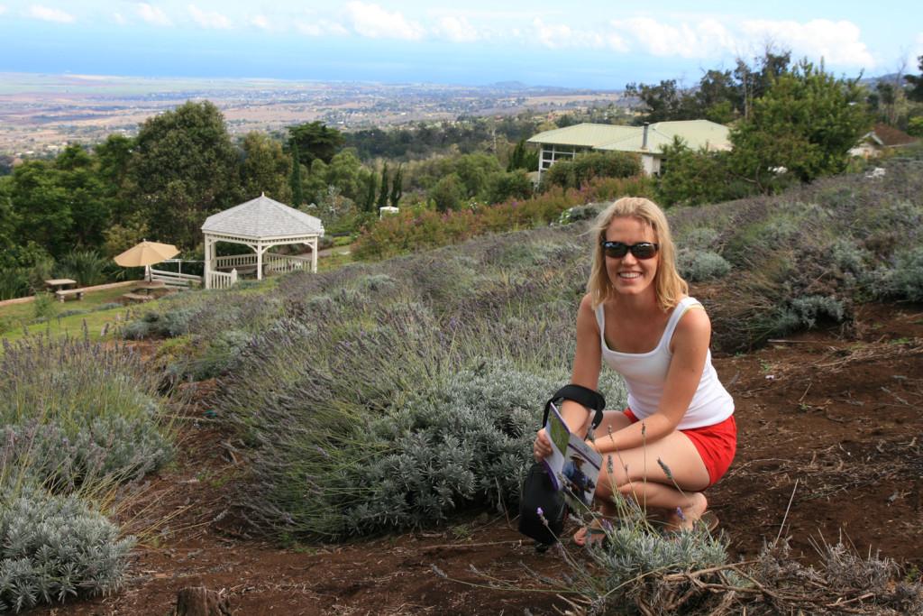Maui-Lavendelfarm
