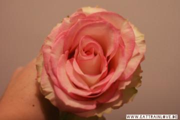 Robert Betz Rose