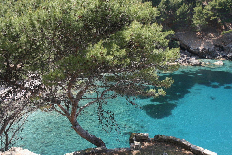 Mallorca Wasser