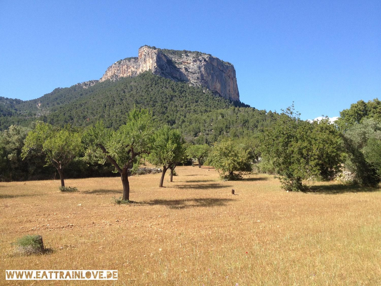 Wandern-Mallorca3