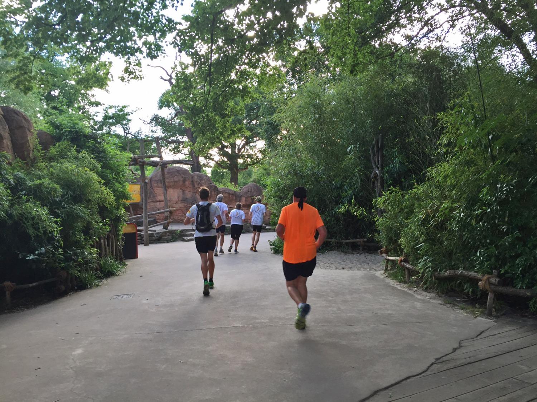 Fun-Run-durch-den-Erlebnis-Zoo-Hannover