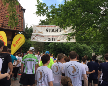 Zoo-Run-Hannover-Fun-Run-2016