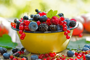 Fotocredit: Fresh Berries in a bowl by Shutterstock