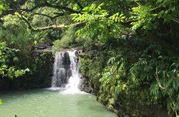 Reisetipps für Maui
