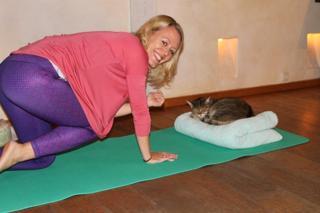 yoga-mit-katze