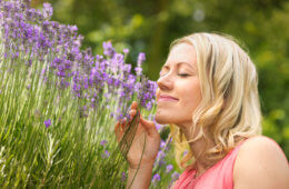 Natürliche-Gesichtspflege-Naturkosmetik